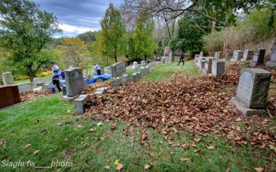 Fall Leaf Cleanup Benefits